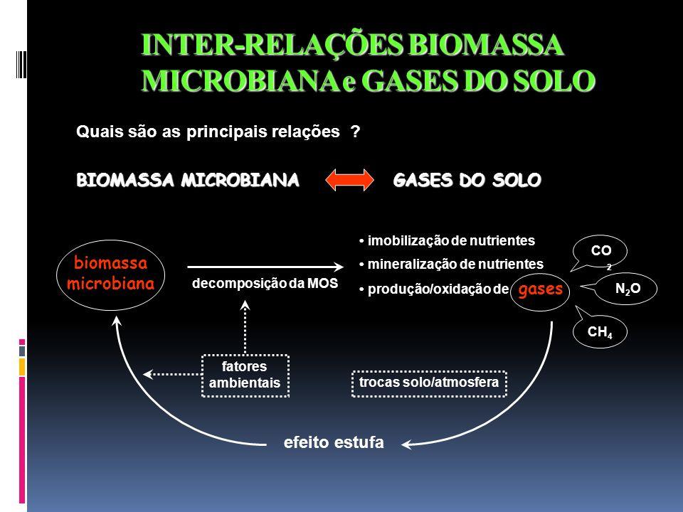 INTER-RELAÇÕES BIOMASSA MICROBIANA e GASES DO SOLO BIOMASSA MICROBIANA GASES DO SOLO Quais são as principais relações ? biomassa microbiana decomposiç
