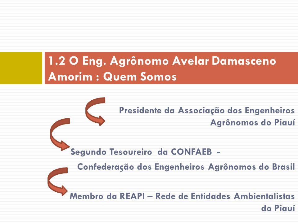 Presidente da Associação dos Engenheiros Agrônomos do Piauí Segundo Tesoureiro da CONFAEB - Confederação dos Engenheiros Agrônomos do Brasil Membro da
