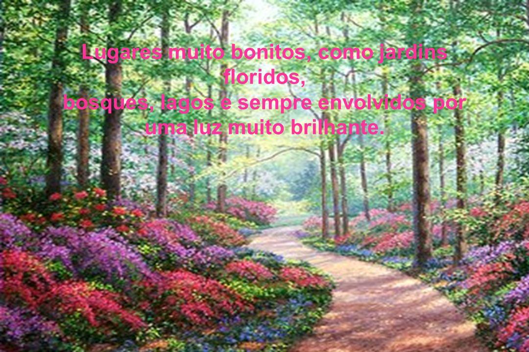 Lugares muito bonitos, como jardins floridos, bosques, lagos e sempre envolvidos por uma luz muito brilhante.