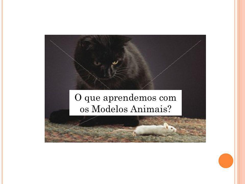 O que aprendemos com os Modelos Animais?