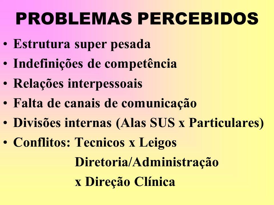 PROBLEMAS PERCEBIDOS Estrutura super pesada Indefinições de competência Relações interpessoais Falta de canais de comunicação Divisões internas (Alas