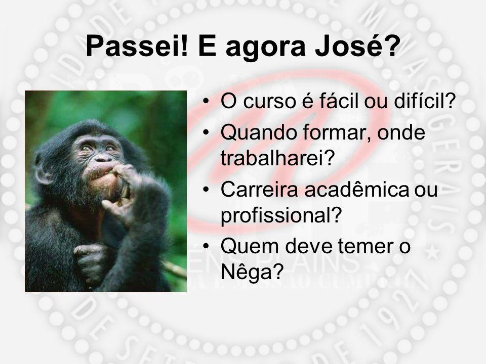 Passei! E agora José? O curso é fácil ou difícil? Quando formar, onde trabalharei? Carreira acadêmica ou profissional? Quem deve temer o Nêga?