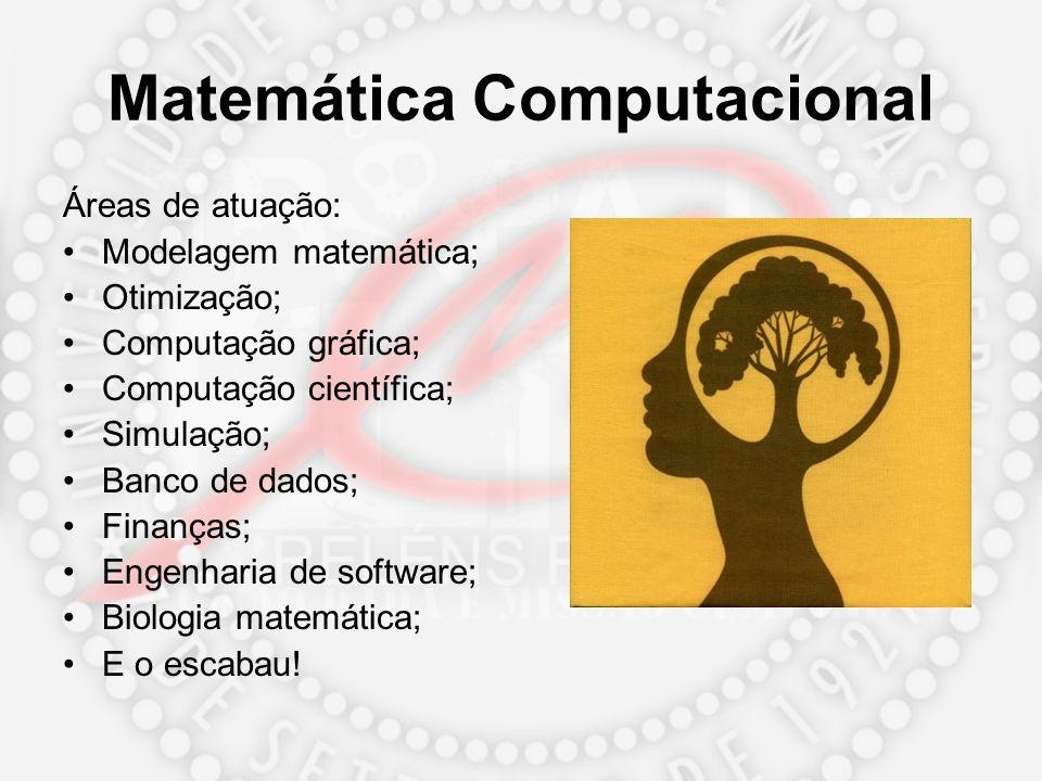 Matemática Computacional Áreas de atuação: Modelagem matemática; Otimização; Computação gráfica; Computação científica; Simulação; Banco de dados; Fin
