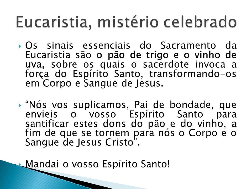 Os sinais essenciais do Sacramento da Eucaristia são o pão de trigo e o vinho de uva, sobre os quais o sacerdote invoca a força do Espírito Santo, tra