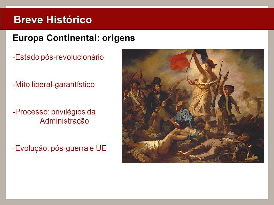 Ciclo de Aulas Internas - 2010 Texto Breve Histórico Europa Continental: origens -Estado pós-revolucionário -Mito liberal-garantístico -Processo: priv