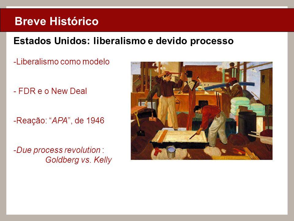 Ciclo de Aulas Internas - 2010 Texto Breve Histórico Estados Unidos: liberalismo e devido processo -Liberalismo como modelo - FDR e o New Deal -Reação