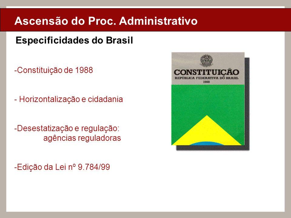 Ciclo de Aulas Internas - 2010 Texto Ciclo de Aulas Internas - 2010 Texto Ciclo de Aulas Internas - 2010 Texto Ascensão do Proc. Administrativo Especi