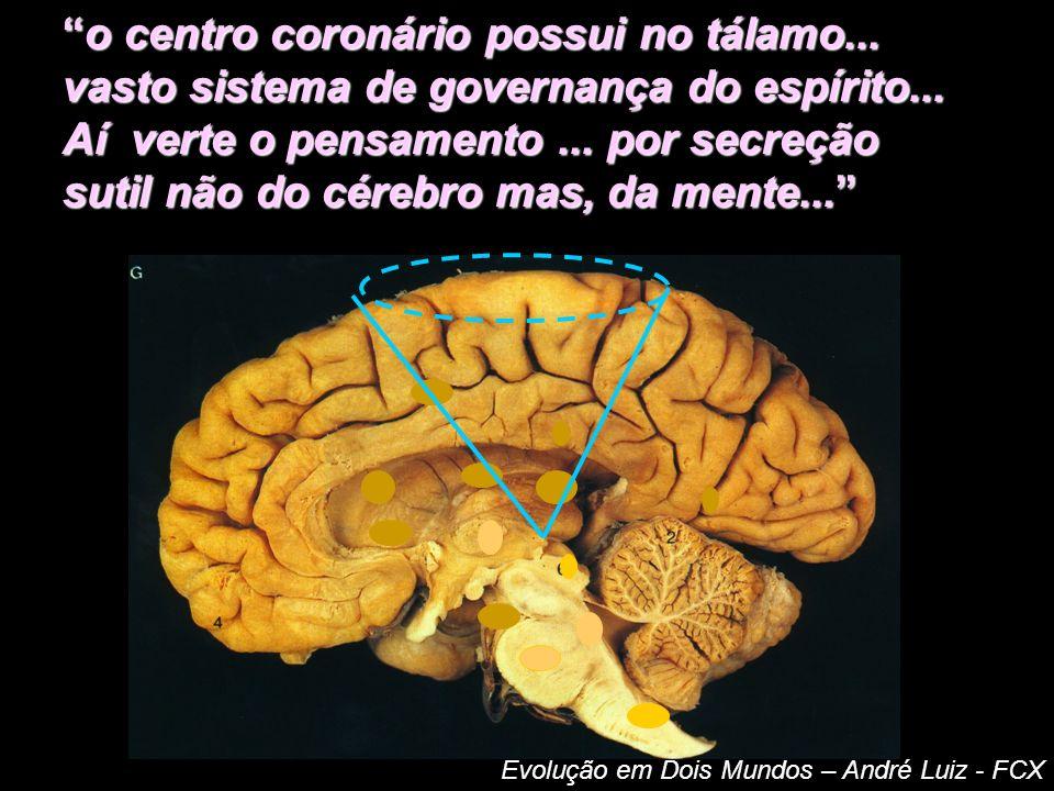 INTEGRAÇÃO MENTE-CORPO ALMA Corpo mental (PENSAMENTOS) Centro Coronário (PERISPÍRITO) => Ligado a núcleos do Diencéfalo e Tálamo (cérebro) CÓRTEX (transmite impulsos, avisos)