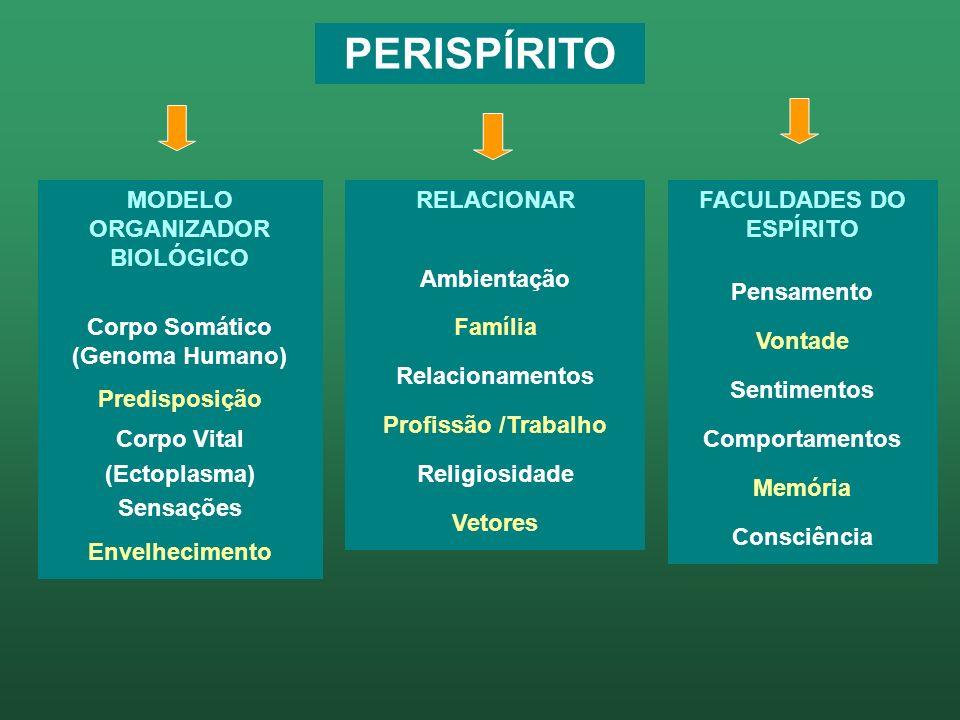 PERÍSPIRITO / MOB (herança genética perispiritual) Modelagem Básica Matriz Corpo Somático (Genoma Humano)