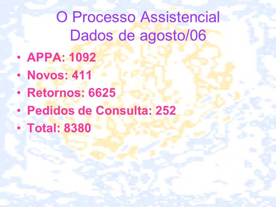 O Processo Assistencial Dados de agosto/06 APPA: 1092 Novos: 411 Retornos: 6625 Pedidos de Consulta: 252 Total: 8380
