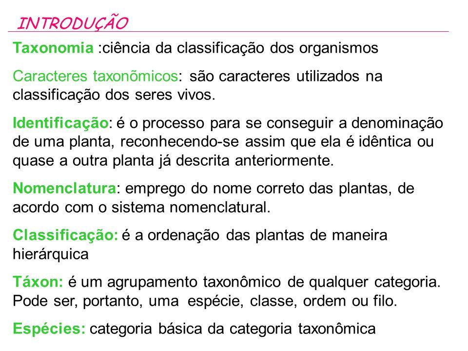 Taxonomia :ciência da classificação dos organismos Caracteres taxonõmicos: são caracteres utilizados na classificação dos seres vivos.