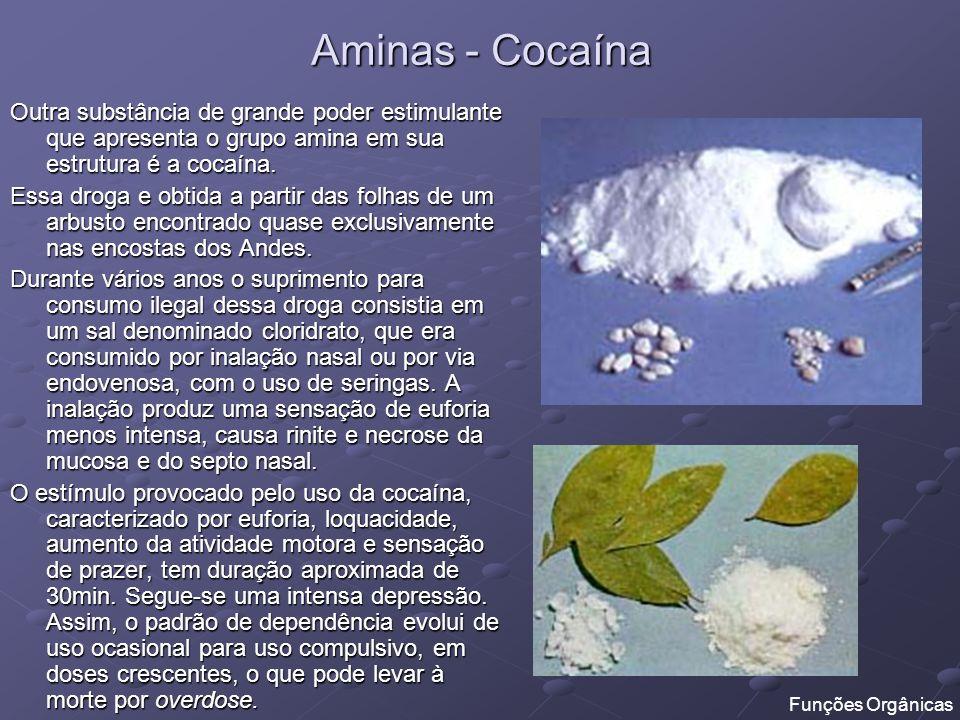 Aminas - Cocaína Outra substância de grande poder estimulante que apresenta o grupo amina em sua estrutura é a cocaína. Essa droga e obtida a partir d