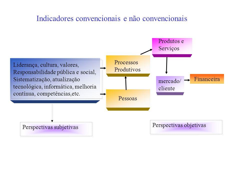 Perspectivas subjetivas Liderança, cultura, valores, Responsabilidade pública e social, Sistematização, atualização tecnológica, informática, melhoria