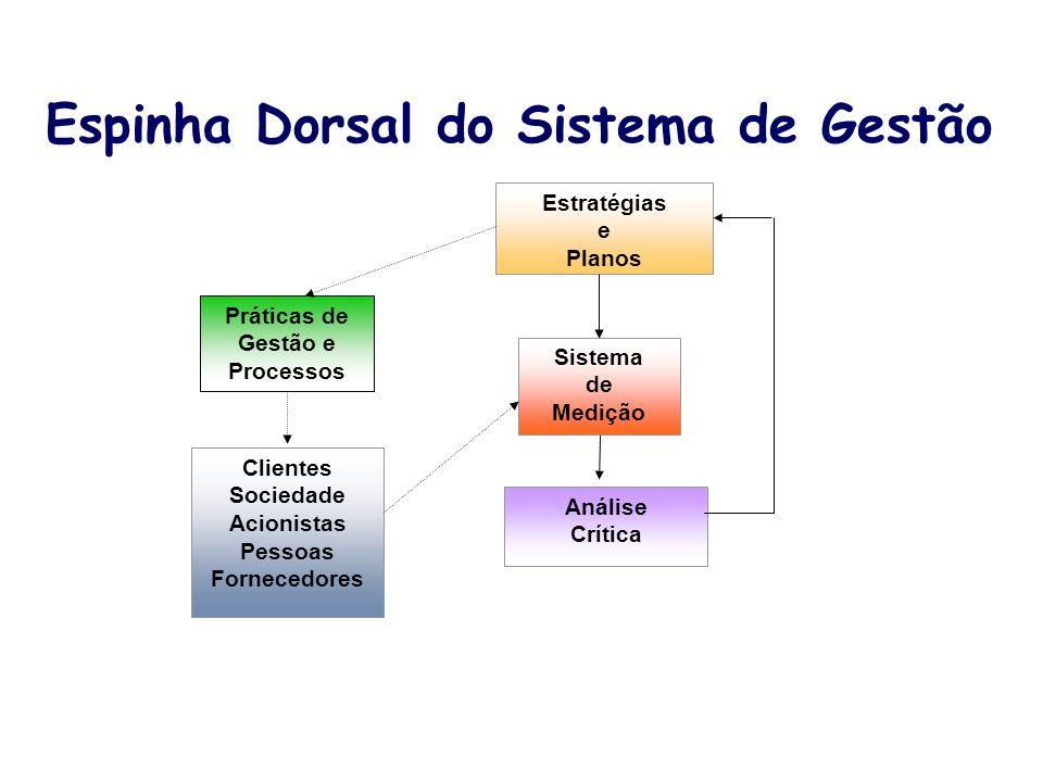Espinha Dorsal do Sistema de Gestão Estratégias e Planos Sistema de Medição Análise Crítica Clientes Sociedade Acionistas Pessoas Fornecedores Prática