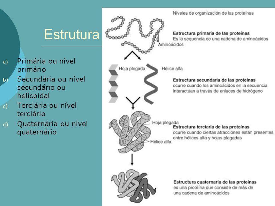 Estrutura a) Primária ou nível primário b) Secundária ou nível secundário ou helicoidal c) Terciária ou nível terciário d) Quaternária ou nível quater