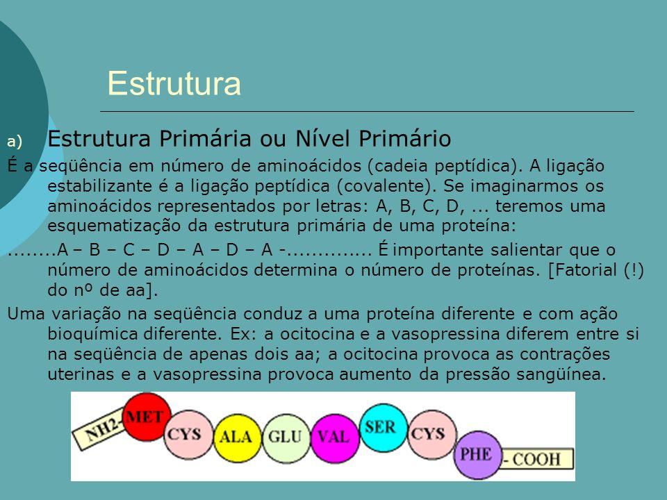 Estrutura a) Estrutura Primária ou Nível Primário É a seqüência em número de aminoácidos (cadeia peptídica). A ligação estabilizante é a ligação peptí
