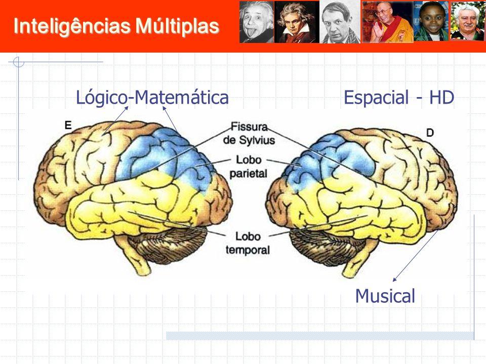 Inteligências Múltiplas Espacial - HDLógico-Matemática Musical