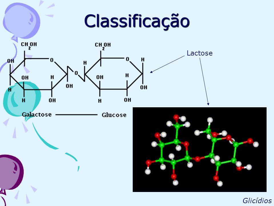 Classificação Maltose Glicídios