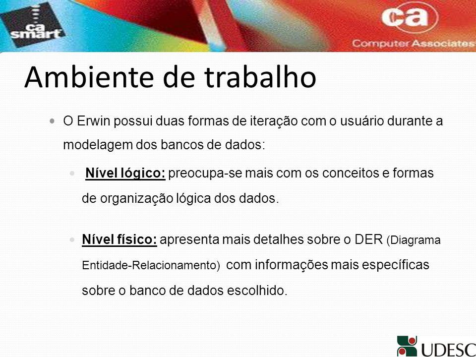 Ambiente de trabalho O Erwin possui duas formas de iteração com o usuário durante a modelagem dos bancos de dados: Nível lógico: preocupa-se mais com