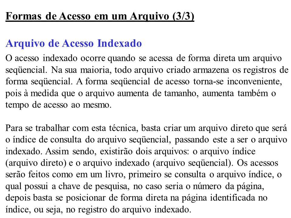 Formas de Acesso em um Arquivo (3/3) Arquivo de Acesso Indexado O acesso indexado ocorre quando se acessa de forma direta um arquivo seqüencial. Na su
