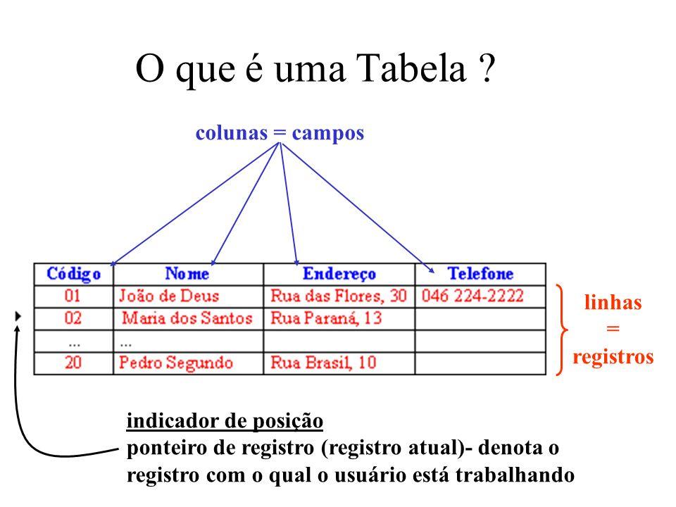 O que é uma Tabela ? colunas = campos linhas = registros indicador de posição ponteiro de registro (registro atual)- denota o registro com o qual o us