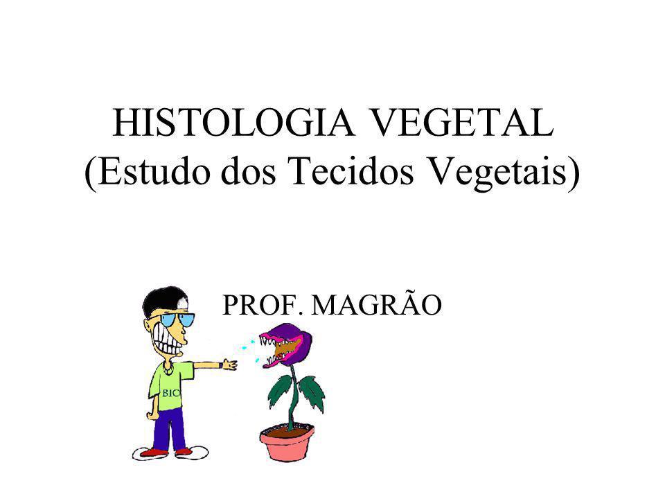 HISTOLOGIA VEGETAL (Estudo dos Tecidos Vegetais) PROF. MAGRÃO