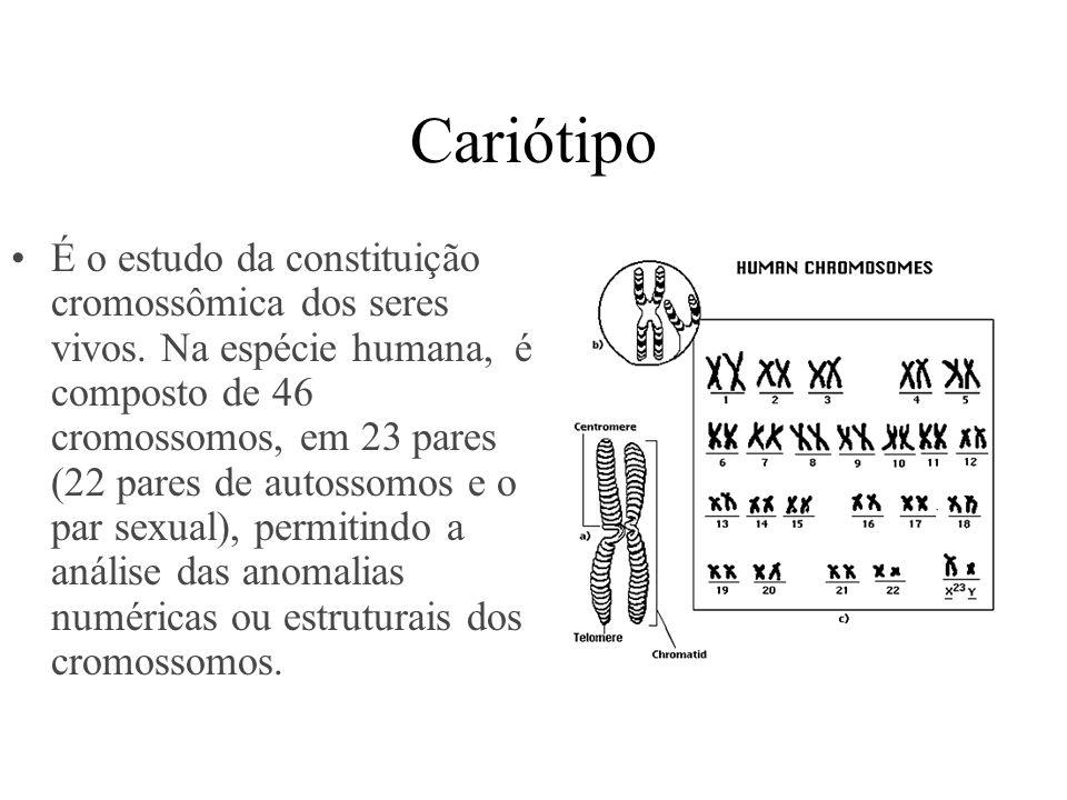 Cariótipo É o estudo da constituição cromossômica dos seres vivos. Na espécie humana, é composto de 46 cromossomos, em 23 pares (22 pares de autossomo