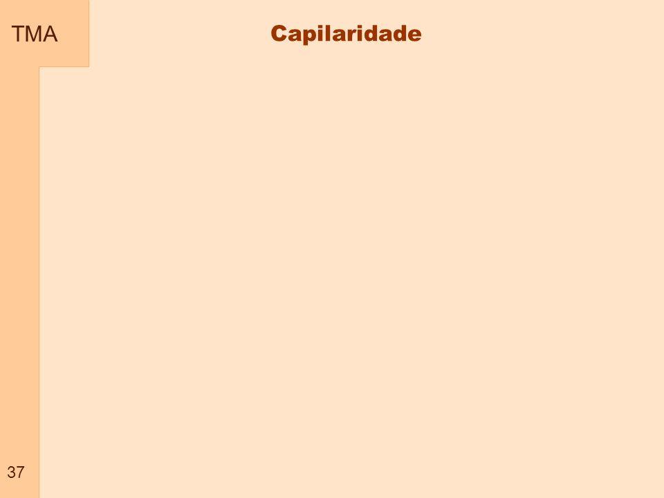 TMA 37 Capilaridade