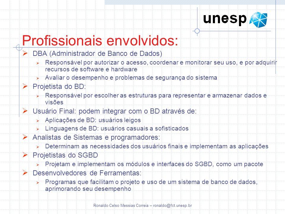 Ronaldo Celso Messias Correia – ronaldo@fct.unesp.br Profissionais envolvidos: DBA (Administrador de Banco de Dados) Responsável por autorizar o acess