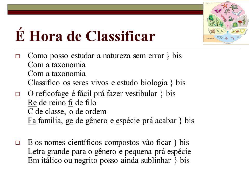 É Hora de Classificar Como posso estudar a natureza sem errar } bis Com a taxonomia Com a taxonomia Classifico os seres vivos e estudo biologia } bis