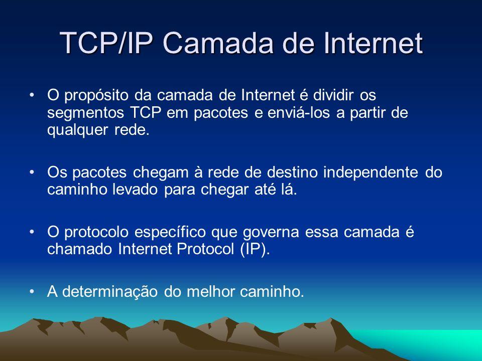 TCP/IP Camada de Internet O propósito da camada de Internet é dividir os segmentos TCP em pacotes e enviá-los a partir de qualquer rede. Os pacotes ch
