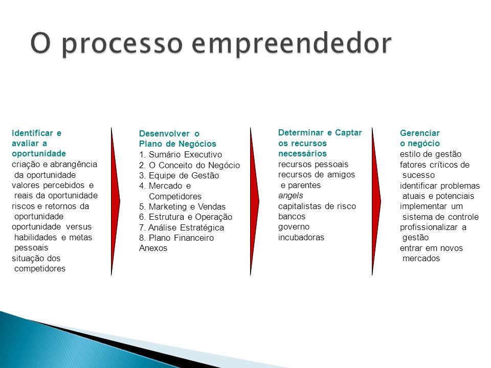 Gerenciar o negócio estilo de gestão fatores críticos de sucesso identificar problemas atuais e potenciais implementar um sistema de controle profissi