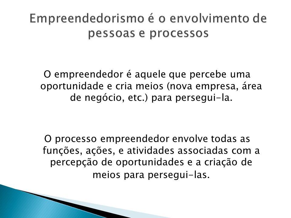 O empreendedor é aquele que percebe uma oportunidade e cria meios (nova empresa, área de negócio, etc.) para persegui-la. O processo empreendedor envo