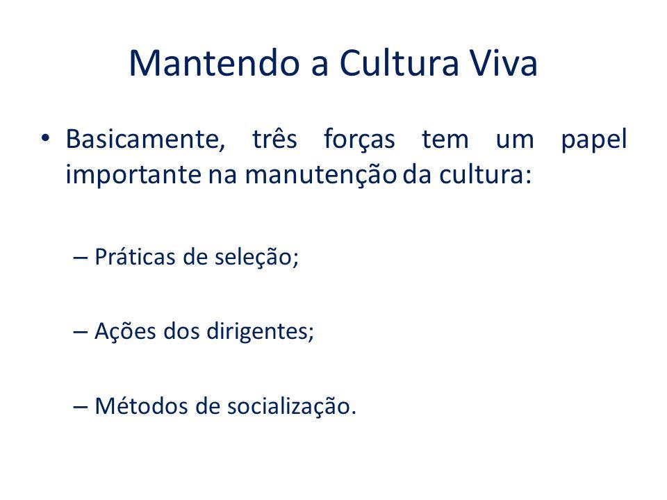 Mantendo a Cultura Viva Basicamente, três forças tem um papel importante na manutenção da cultura: – Práticas de seleção; – Ações dos dirigentes; – Métodos de socialização.