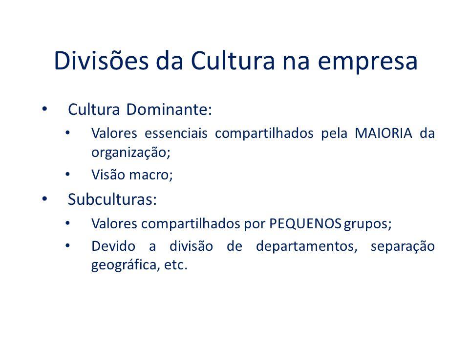 Divisões da Cultura na empresa Cultura Dominante: Valores essenciais compartilhados pela MAIORIA da organização; Visão macro; Subculturas: Valores compartilhados por PEQUENOS grupos; Devido a divisão de departamentos, separação geográfica, etc.