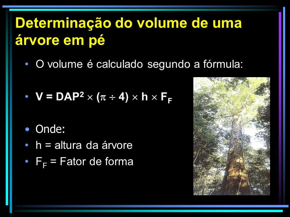 Determinação do volume de uma árvore em pé A influencia da correta medição do DAP é bastante expressiva pois o diâmetro é elevado ao quadrado e, quando se calcula a área transversal, o erro será também aumentado, por isso a medição deve ser a mais precisa possível.