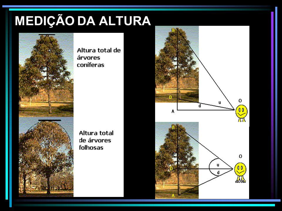 Instrumentos de medição: HIPSÔMETROS – são instrumentos que servem para medir alturas de árvores para posterior determinação do volume.