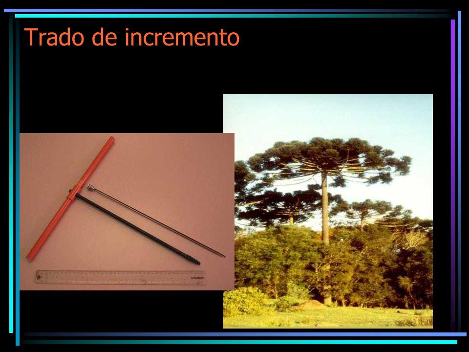 Exercício Exercício Prático: Cálculo do Volume e Fator de Forma A partir dos dados da árvore, fornecidos a seguir determine: O volume total, pelos métodos de Huber, Smalian e Newton.