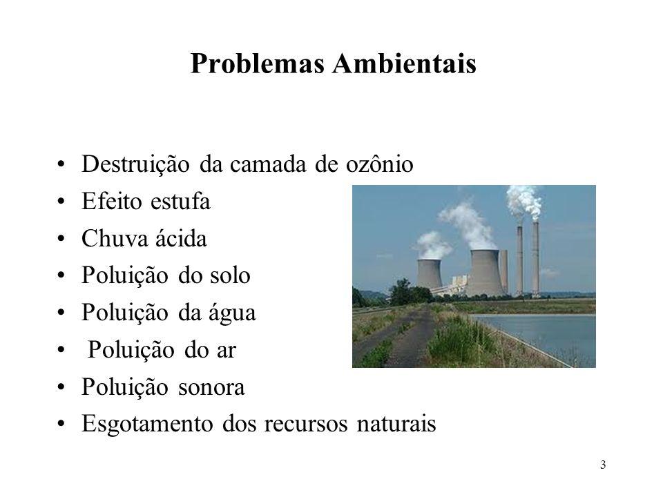 Problemas Ambientais Destruição da camada de ozônio Efeito estufa Chuva ácida Poluição do solo Poluição da água Poluição do ar Poluição sonora Esgotam