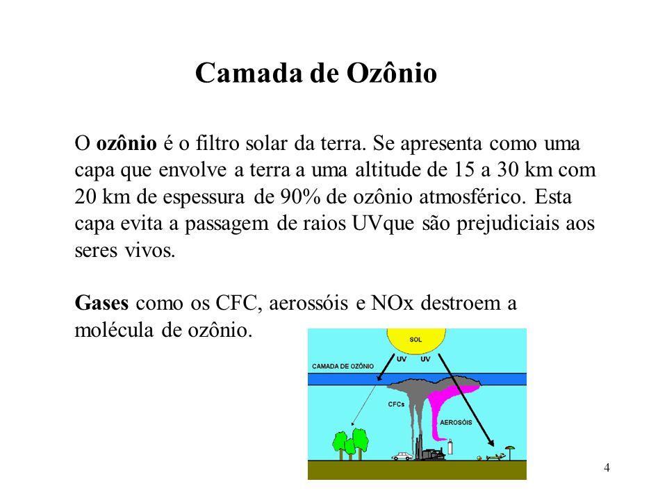 Camada de Ozônio 4 O ozônio é o filtro solar da terra. Se apresenta como uma capa que envolve a terra a uma altitude de 15 a 30 km com 20 km de espess