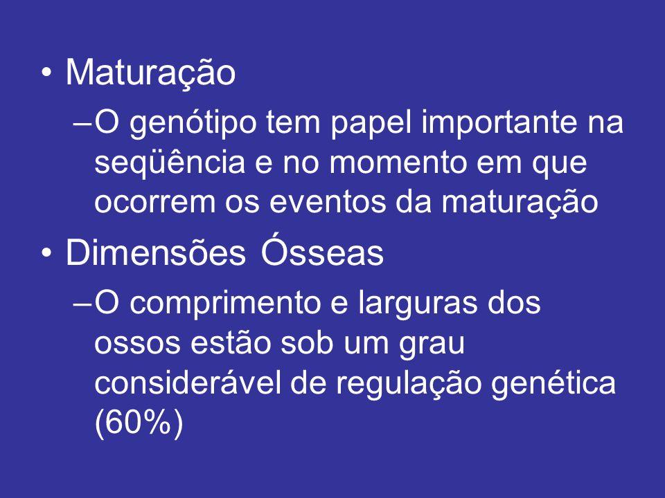 Maturação –O genótipo tem papel importante na seqüência e no momento em que ocorrem os eventos da maturação Dimensões Ósseas –O comprimento e larguras