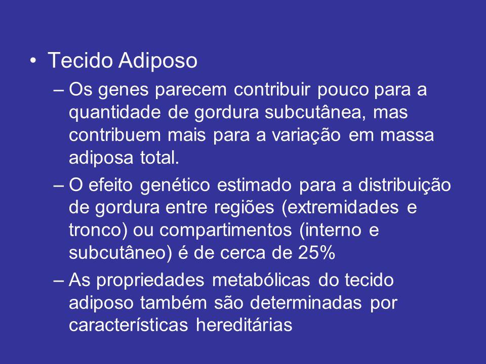 Tecido Adiposo –Os genes parecem contribuir pouco para a quantidade de gordura subcutânea, mas contribuem mais para a variação em massa adiposa total.