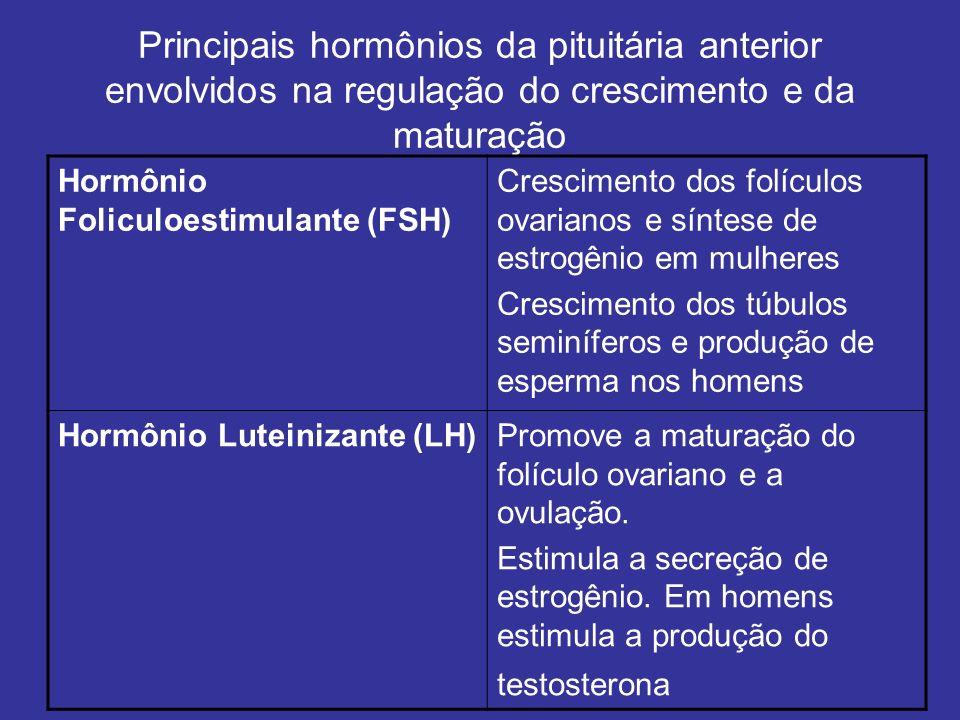 Principais hormônios da pituitária anterior envolvidos na regulação do crescimento e da maturação Hormônio Foliculoestimulante (FSH) Crescimento dos f