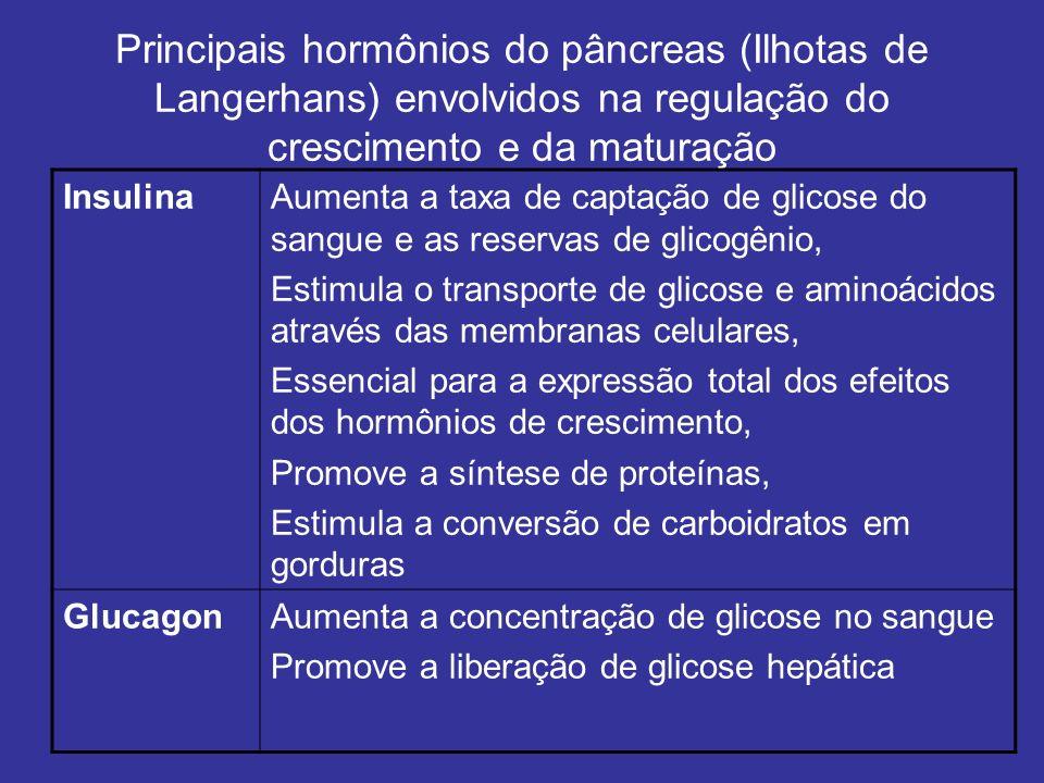 Principais hormônios do pâncreas (Ilhotas de Langerhans) envolvidos na regulação do crescimento e da maturação InsulinaAumenta a taxa de captação de g
