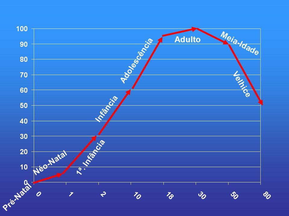 Pré-Natal Néo-Natal 1ª. Infância Adolescência Infância Adulto Meia-Idade Velhice