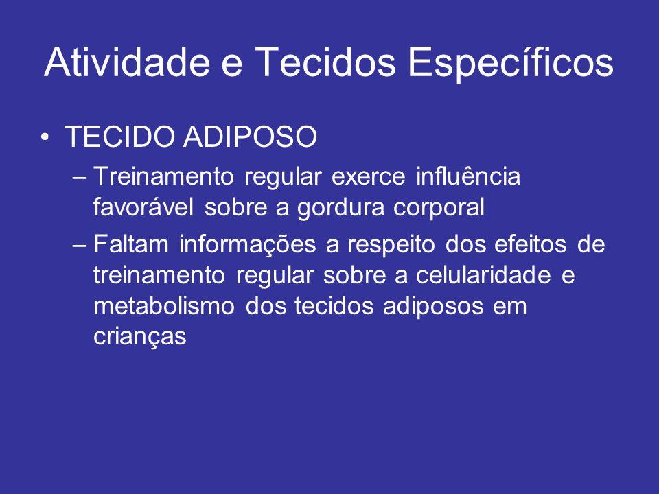 Atividade e Tecidos Específicos TECIDO ADIPOSO –Treinamento regular exerce influência favorável sobre a gordura corporal –Faltam informações a respeit