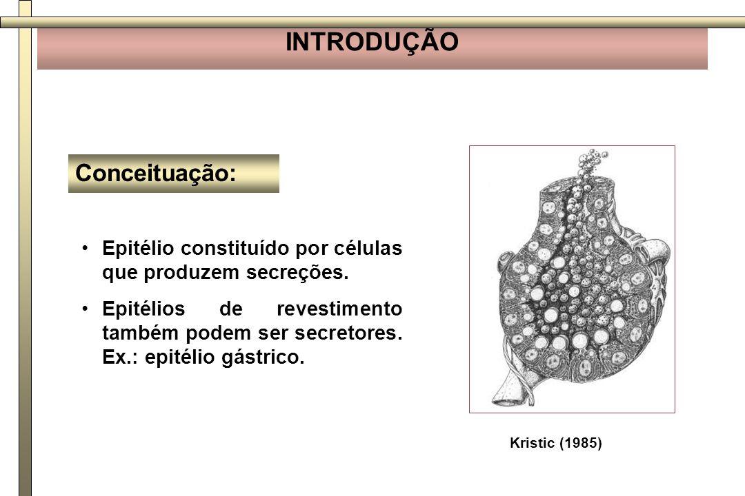 Epitélio constituído por células que produzem secreções. Epitélios de revestimento também podem ser secretores. Ex.: epitélio gástrico. Conceituação: