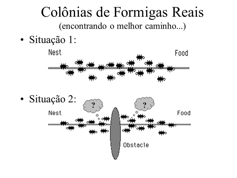 Situação 1: Situação 2: ?? Colônias de Formigas Reais (encontrando o melhor caminho...)