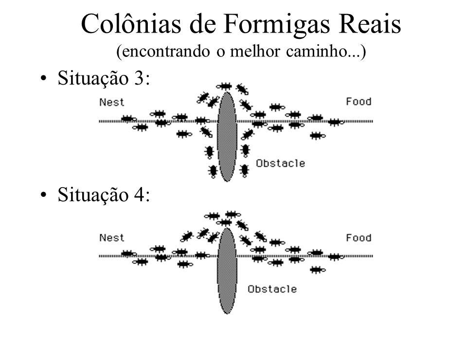 Situação 3: Situação 4: Colônias de Formigas Reais (encontrando o melhor caminho...)