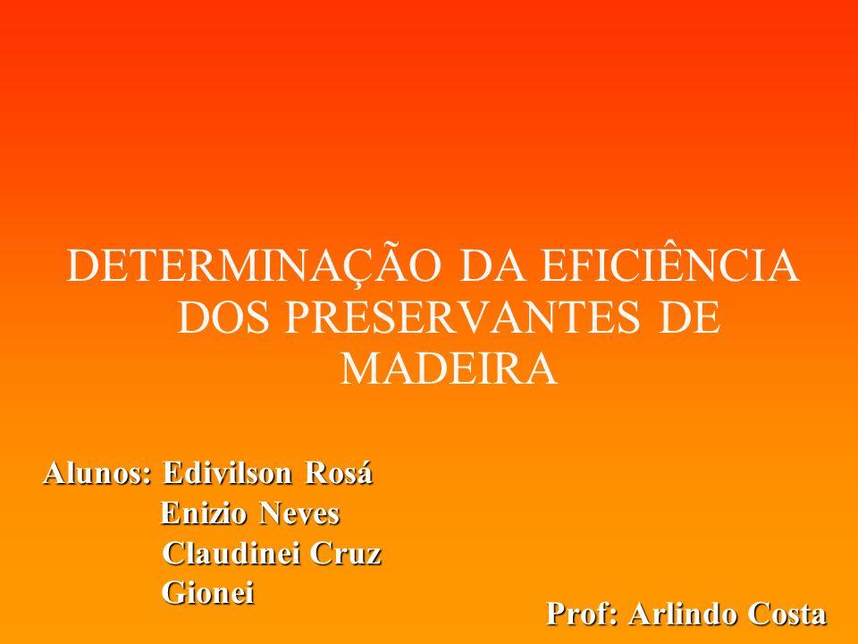 Prof: Arlindo Costa DETERMINAÇÃO DA EFICIÊNCIA DOS PRESERVANTES DE MADEIRA Alunos: Edivilson Rosá Enizio Neves Enizio Neves Claudinei Cruz Claudinei C